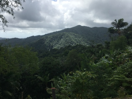 The Luquillo Mountains