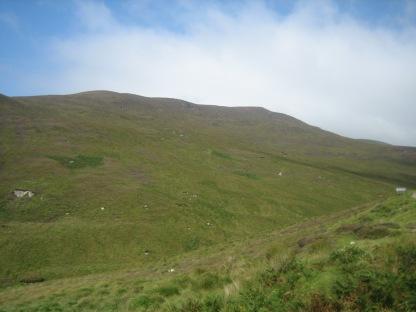 Ireland2007pics 238