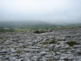 Ireland2007pics 374
