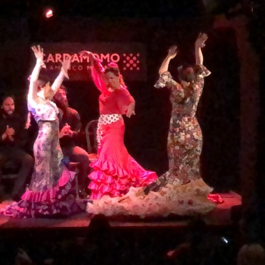 A Night of Flamenco